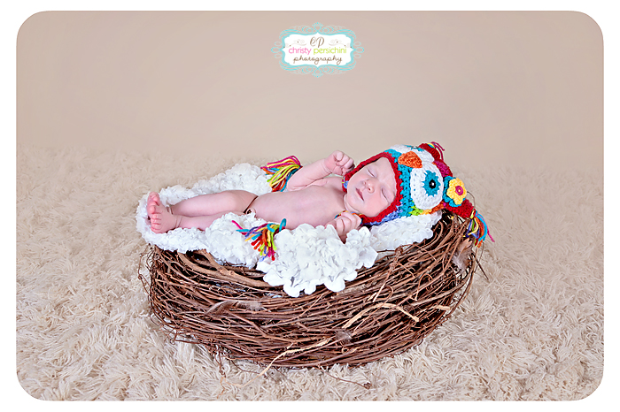 Birds Nest Newborn Christy Persichini Photography