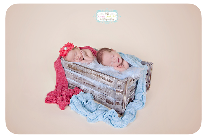 Twin Newborn Crate Christy Persichini Photography